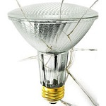 Shatter Resistant Halogen PAR Lamps - Category Image