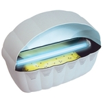 Paraclipse Insect Inn - Category Image